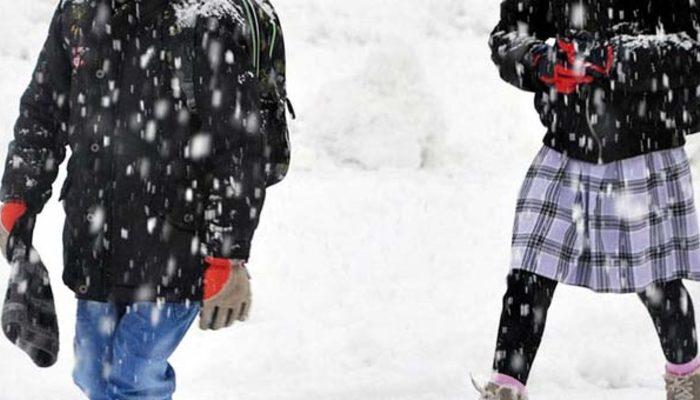 Van'ın Çaldıran ilçesinde eğitime kar engeli
